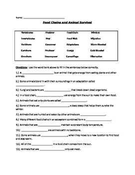 Food Chains and Animal Adaptations Quiz/Test