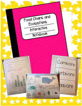 Food Chains and Ecosystems Interactive Notebook