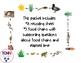 Food Chains and Elapsed TIme