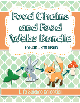 Food Chains and Food Webs BUNDLE