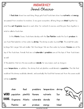 Food Chains and Food Webs Cloze Reading Activity