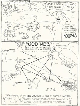 Food Chains and Food Webs Combo