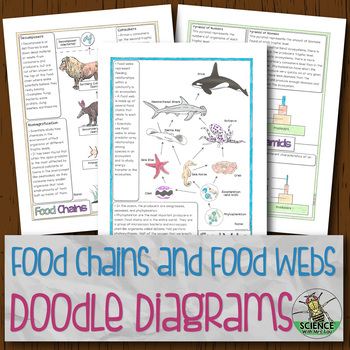 Food Chains and Food Webs Doodle Diagrams
