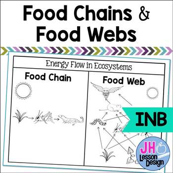 Food Chains and Food Webs Interactive Notebook Activity