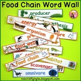 Food Chains and Food Webs Word Wall