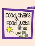 Food Chains and Food Webs - NO PREP Notes and Activities f