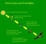 Food Chains and Food Webs SMART Notebook Lesson