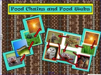 Food Chains and Food Webs Smartboard Lesson