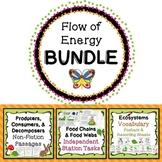 Food Chains & Food Webs Flow of Energy Science Bundle