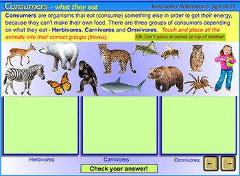 Food Chains and Food Webs - an interactive SmartBoard and Whiteboard lesson