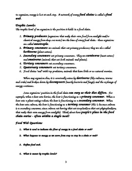 Food Chains and Webs Life Science Notes and Worksheets