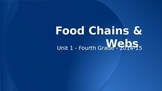 Food Chains and Webs PowerPoint