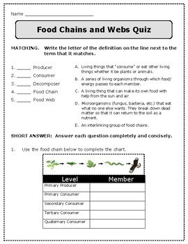 Food Chains and Webs: Producers, Consumers, Decomposers - NGS 5-LS2