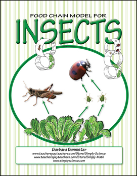Food Chains for an Insect