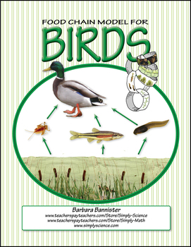 Food Chains for Birds