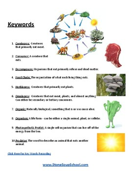 K - 8 - Food Chains - Science - Speech and Language Disabilities - ESSA