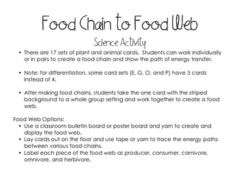 Food Chains to Food Web