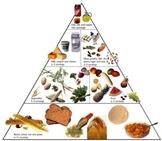 Food Chart Smart Board Lesson