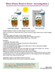 Food Energy: Organization for Matter and Energy Flow in Organisms - Grade 5 NGSS