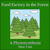 Food Factory in the Forest - A Photosynthesis Mini-Unit