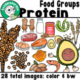 Food Groups: Protein