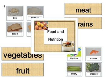 Food / Nutrition - Classifying - Sorting Foods by Type