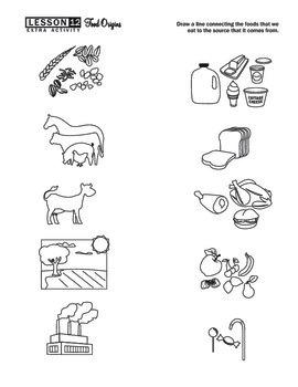 Food Origins Worksheet