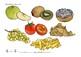 Food Picture Printouts