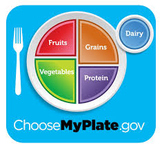 Food Plate Nutrition