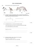 Food Pyramid Exam Questions and anwsers - Y7 and Y8 - Dyslexic Friendly