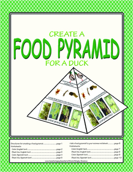Food Pyramid Model for a Duck