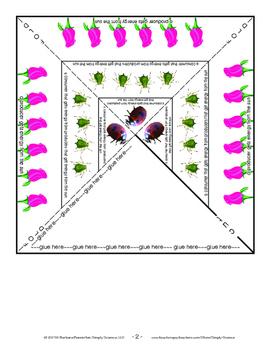 Food Pyramid Model for a Ladybug