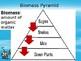 Food Pyramids PowerPoint