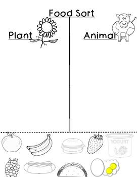 Food Sort: Plant or Animal