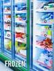 Food Sorts: Life Skills File Folder Special Education