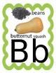 Food Themed Alphabet for Classroom Walls
