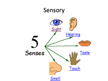 Food technology visual vocabulary