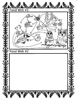 Food Web Activity