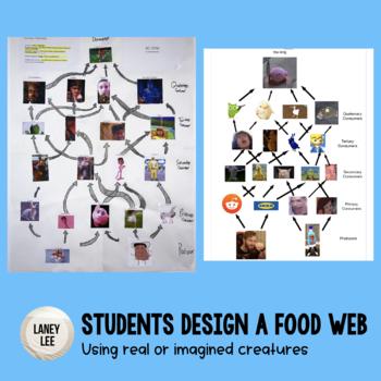 Food Web Assignment Rubric - FREEBIE!