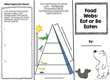 Food Web Brochure