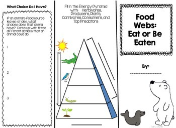 Food Web Brochure