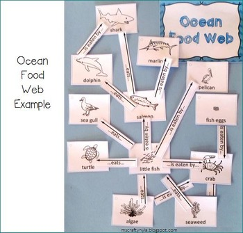Food Chains And Food Web Building Kit By Nyla S Crafty Teaching Tpt