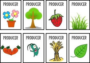 Food Web Card Game