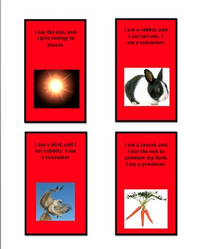 Food Web Cards