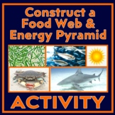 Food Web Cards - Construct an Atlantic Ocean Food Web & Food Pyramid
