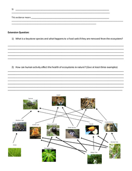 Food Web Collapse Study