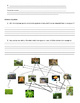 Food Web Collapse Study