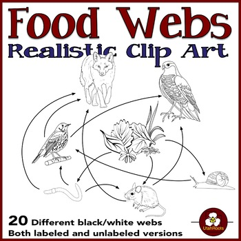 Food Web Diagrams Clip Art By Utahroots Teachers Pay Teachers