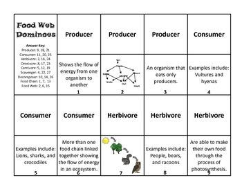 Food Web Dominoes Game