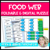 Food Web & Food Chain Vocabulary Foldable